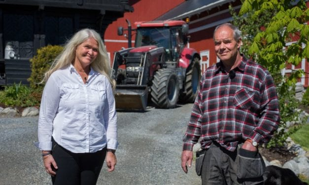 Bedriftsforsikring for gårdbrukere