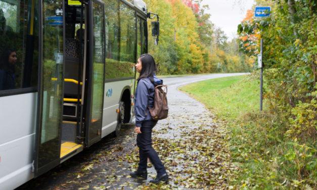 Bein for buss i Vestfold og Telemark